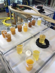 Tank samples, checking those ferments, Dec 2014